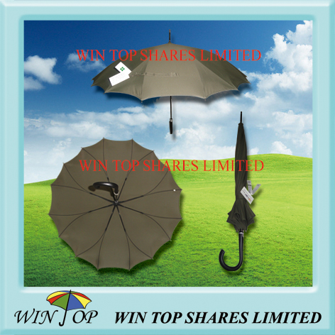 Special design patent umbrella